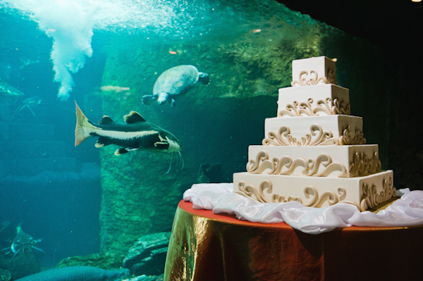 Stop Two In Our Unique Wedding Venue Series Seaworld Or