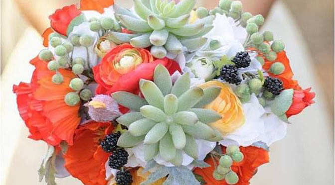 Succulents for your Wedding Day!