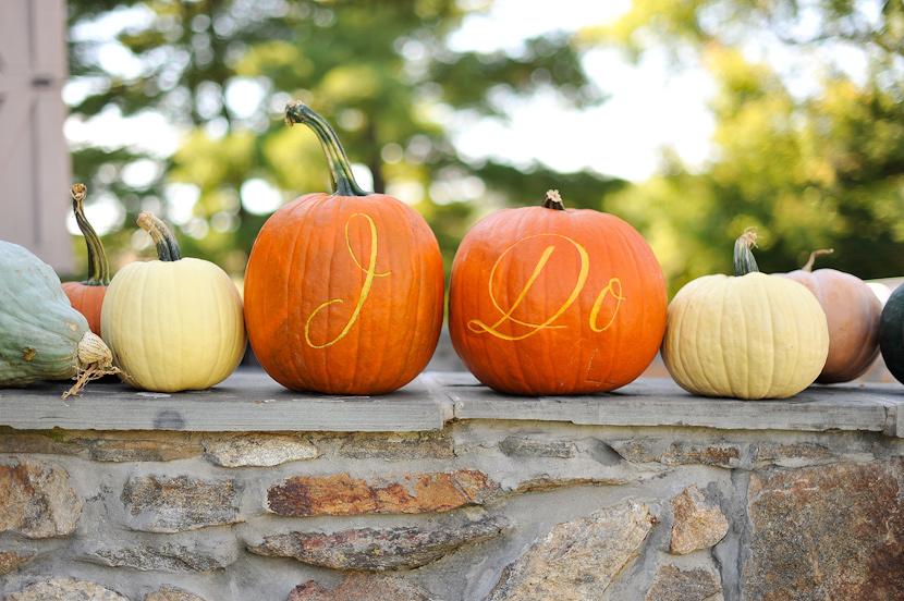Pumpkin Patch Weddings