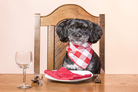 The Importance of Good Table Manners
