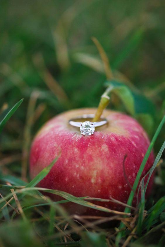 apple orchard wedding