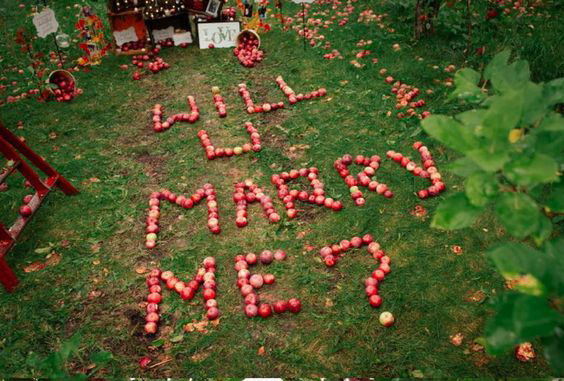 """Apple-y Married"" … an Apple Themed Wedding"