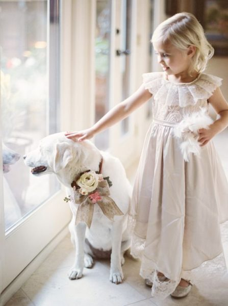 have your furry friend in the wedding