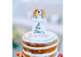 Having your best friend in your wedding …. your dog that is!